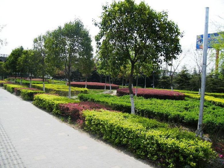 三角花园绿化工程